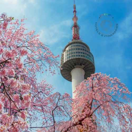 Seoul Tower_ Discover Seoul Pass